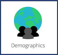 Demographics E-commerce Cover
