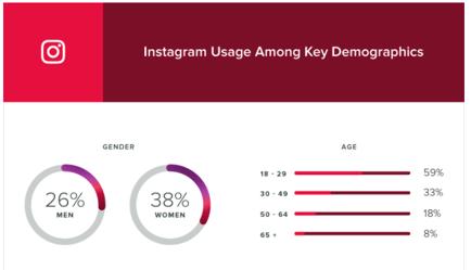 instagram user demographic